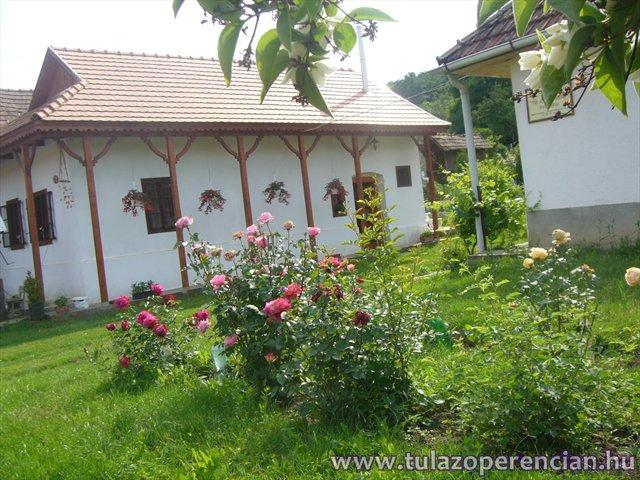 Kis ház a rózsakert mögött